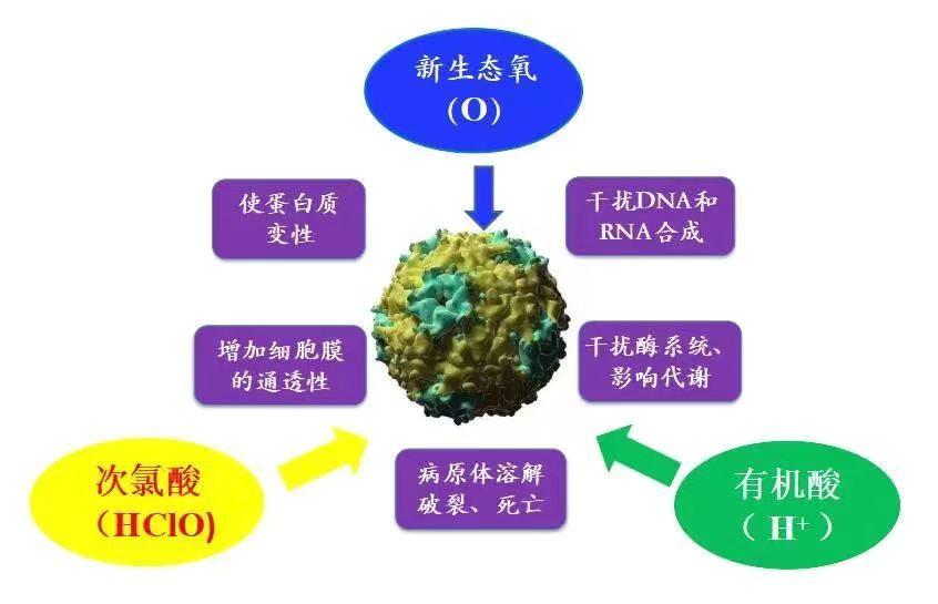 http://nxintest-files.t.nxin.com/cms_image_6f80be09-61c0-4c1b-a493-6b819d7ced72.jpg